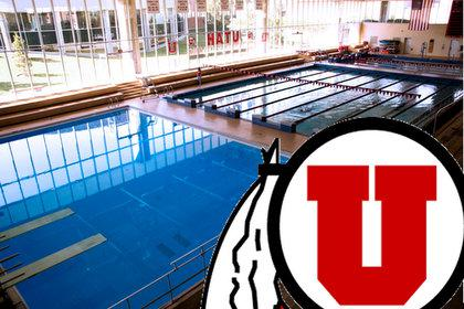 Utah Hires Dykstra From Unt Collegeswimming