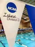 Biewert, Waeger Added to NCAA Committee