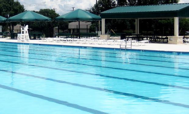 William Drive Pool