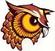 Bradford Area High School logo