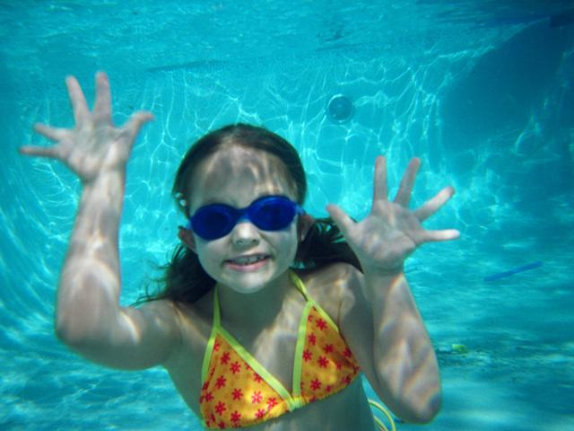 new trier swim club meet results 2016